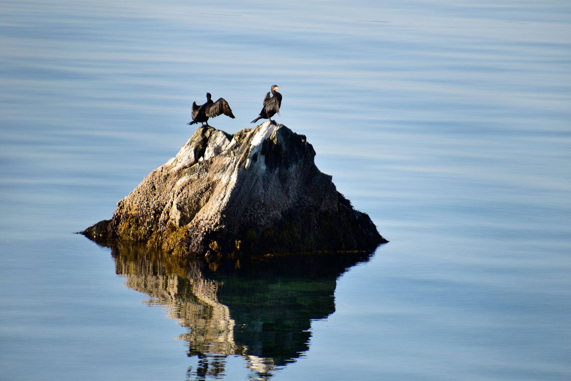 Fisketur. Foto